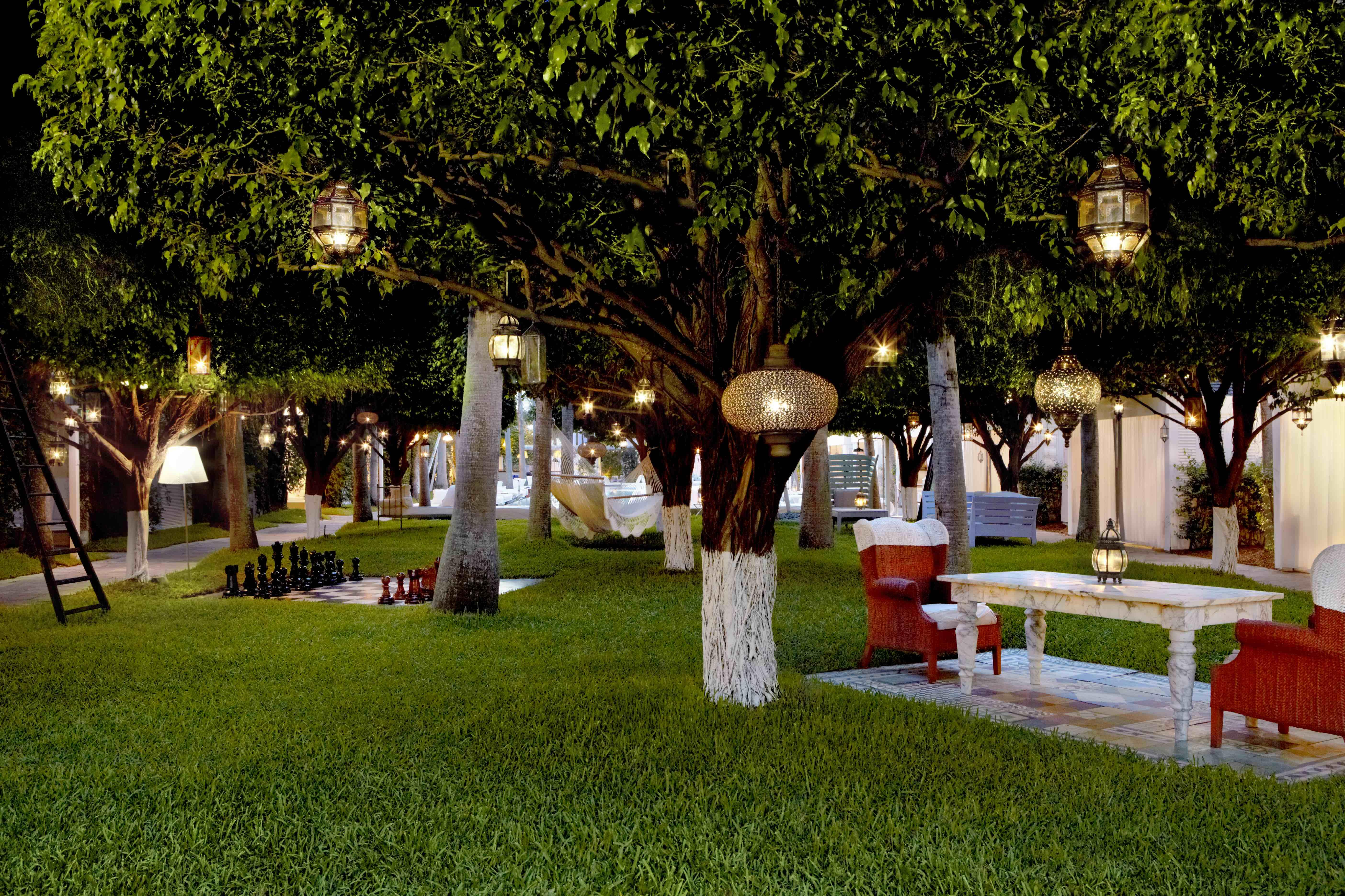 A green tree-filled outdoor lounge space with hanging lights